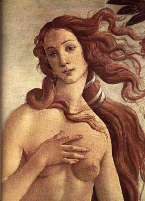 BOI0001 - Botticelli Painting Replica
