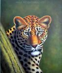 Wildlife Art Painting