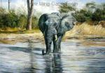 Oil Painting of Elephant